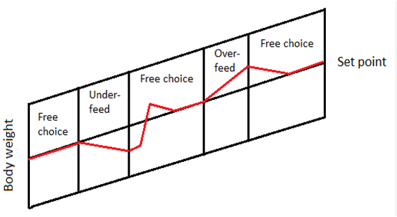 Set-Point theory graph