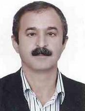 Wafa Qaderi