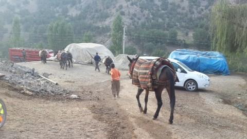 Roboski men and boys heading out at 6 am to meet Ezidis at border