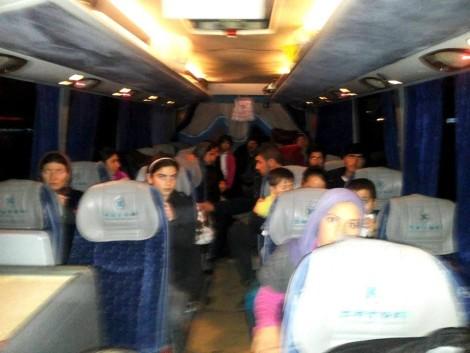 ezidis bus to bulgaria (2)