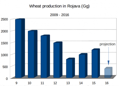 Rojava wheat production
