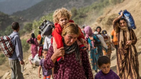 Yezidi refugees in Sinjar mountains, 2014